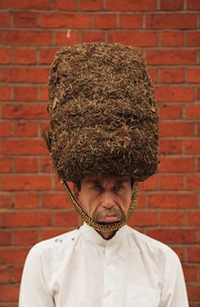 Hat-itecture Images courtesy of www.bdonline.co.uk