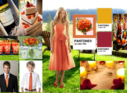 As seen on iPad: Country Wedding created by Gio at The Dessy Group's Wedding Inspiration Styleboard Gallery. Image courtesy of dessy.com