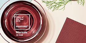 Pantone Color of the Year for 2015: PANTONE 18-1438 Marsala