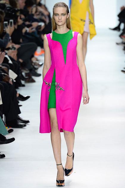 Paris Fashion Week Fall 2014: Christian Dior