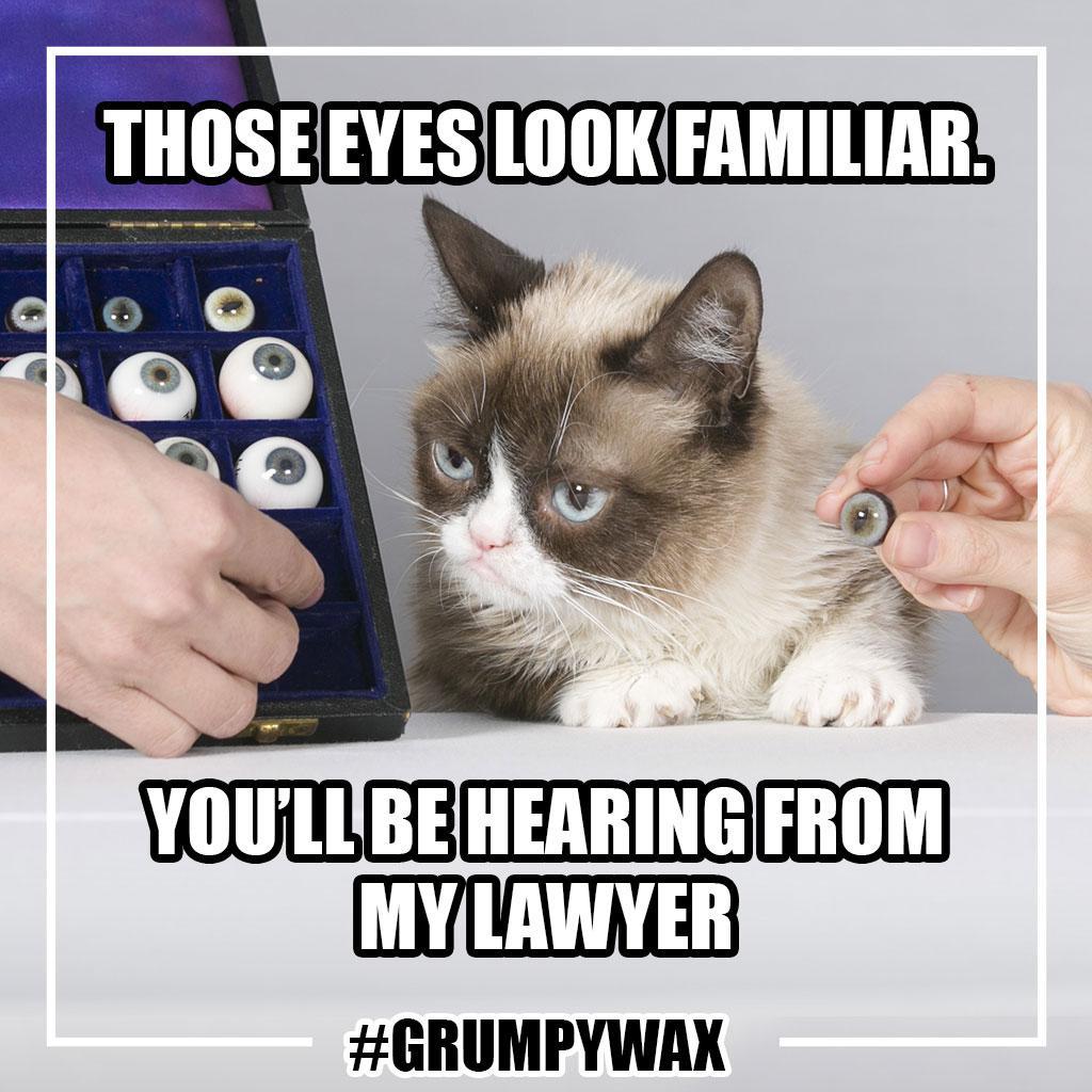 Grumpy-Cat-Sitting-MT