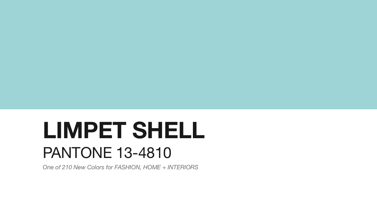 PANTONE-13-4810-Limpet-Shell