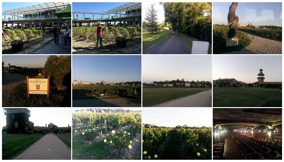 Bordeaux-France-Trip-Nature-Set