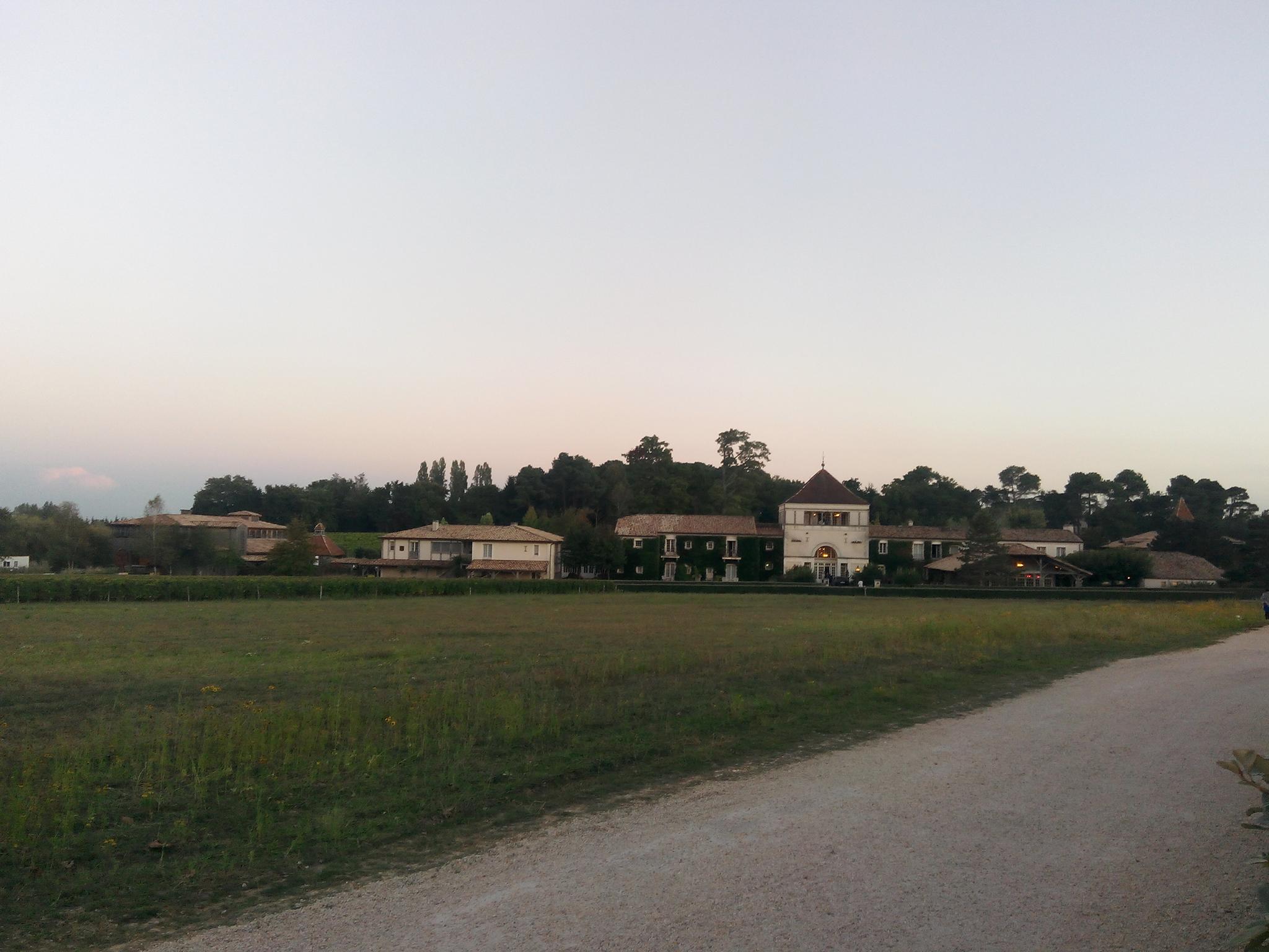 Bordeaux-France-Trip-Vineyards-05b