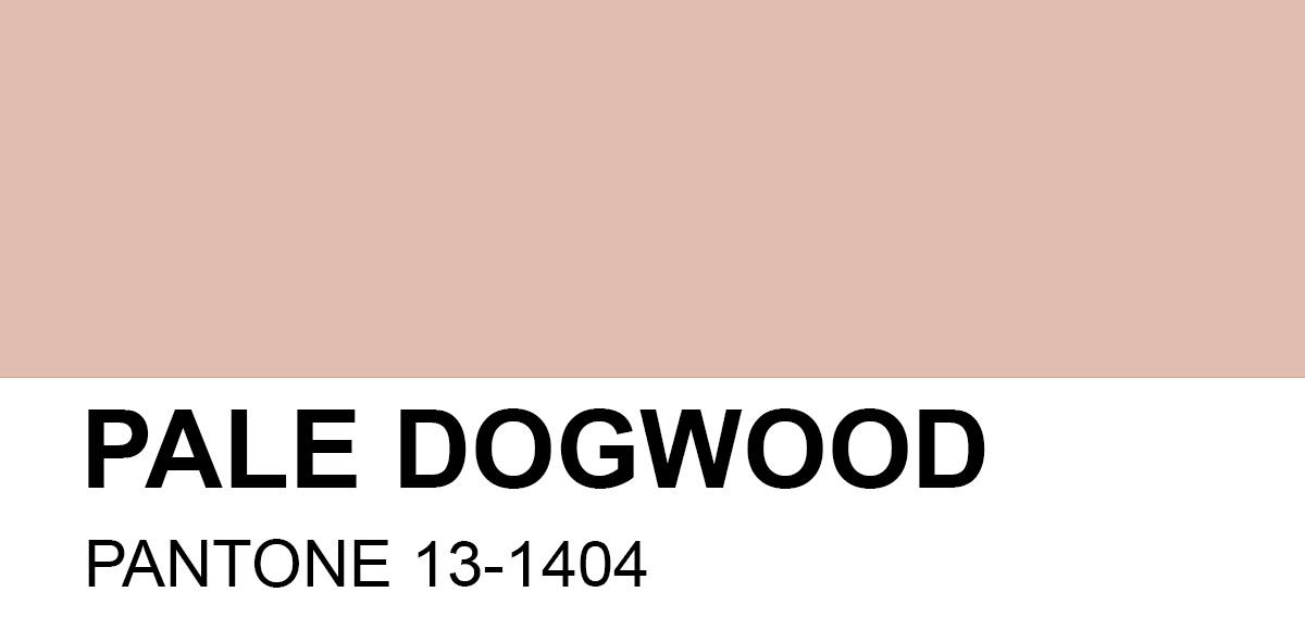 PANTONE 13-1404 Pale Dogwood