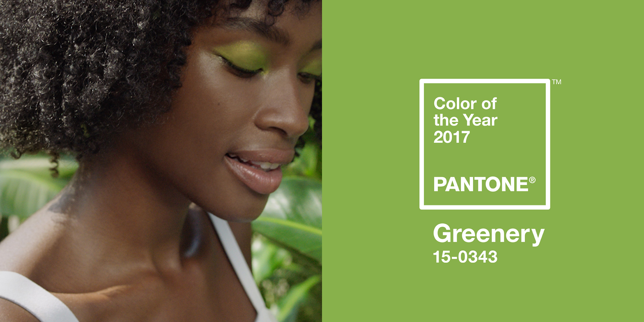 Pantone Color of the Year 2017: PANTONE 15-0343 Greenery