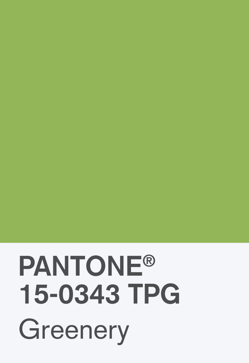 Pantone Color of the Year 2017: PANTONE 15-0343 Greenery Chip