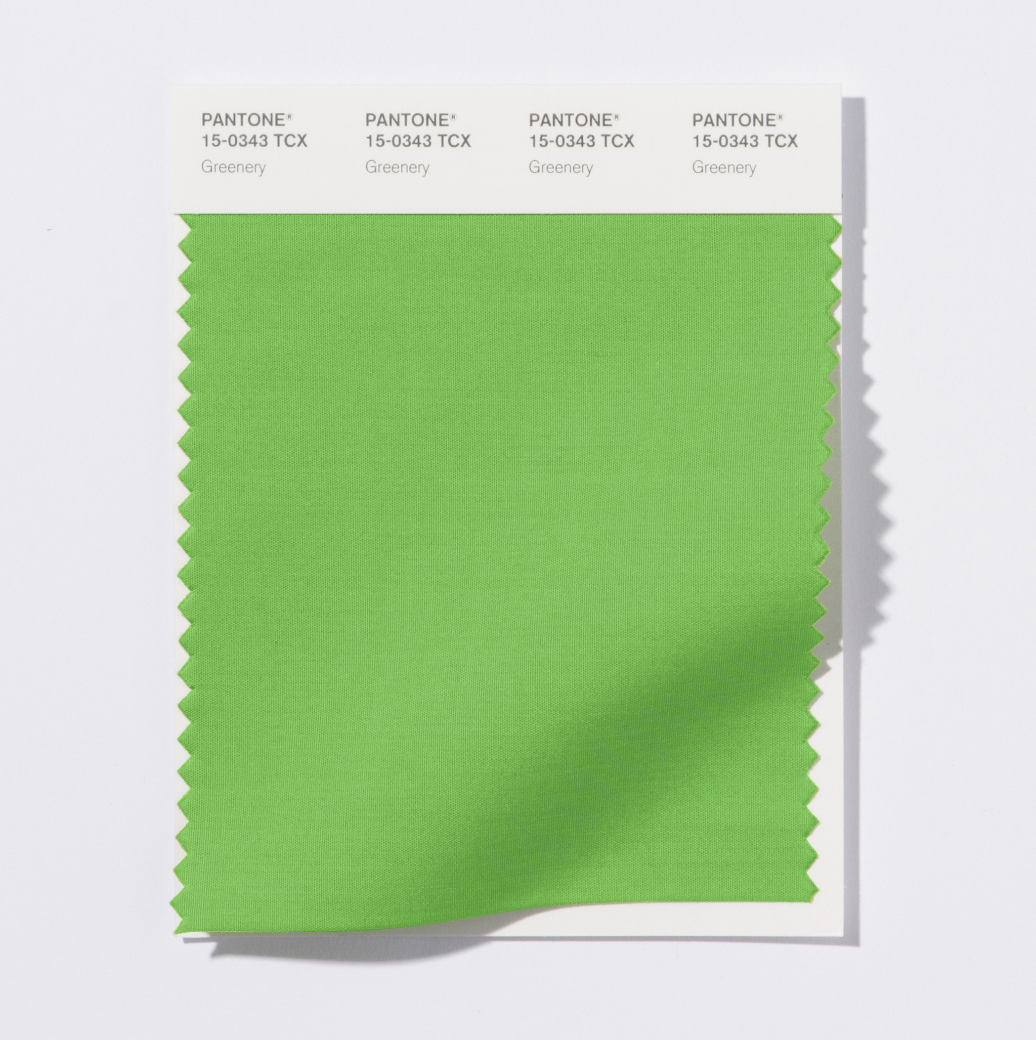 Pantone Color of the Year 2017: PANTONE 15-0343 Greenery Textile Swatch