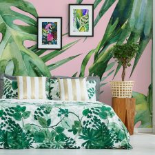Plants in Your Home: The Urban Jungle Trend