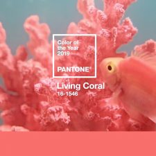 Pantone Color of the Year 2019: PANTONE 16-1546 Living Coral