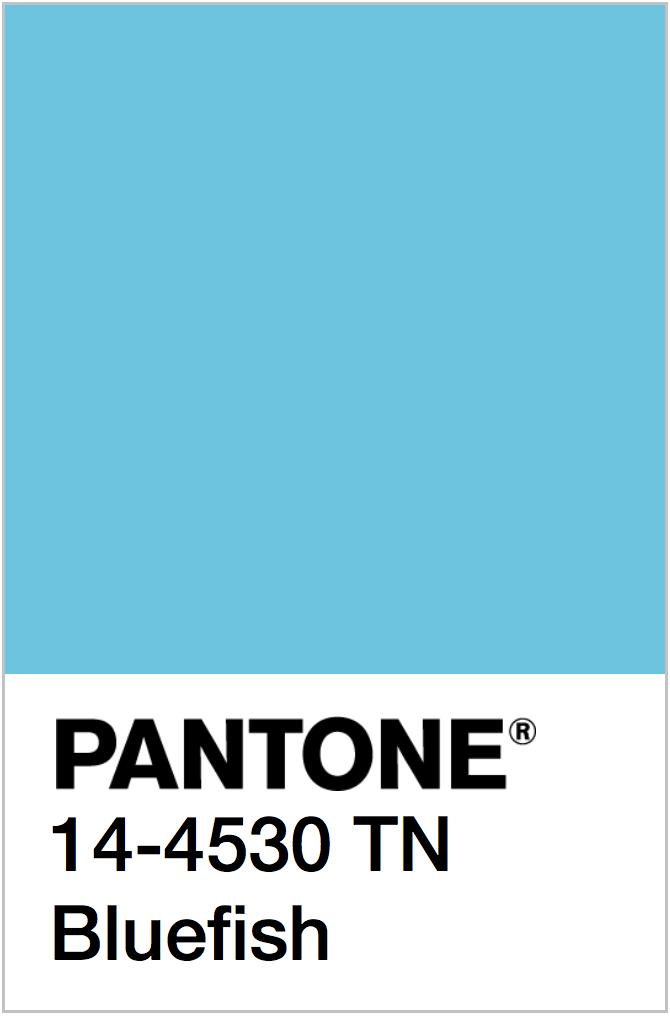 PANTONE NEON BLUE COLOR SWATCH