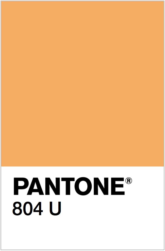 PANTONE NEON ORANGE COLOR SWATCH