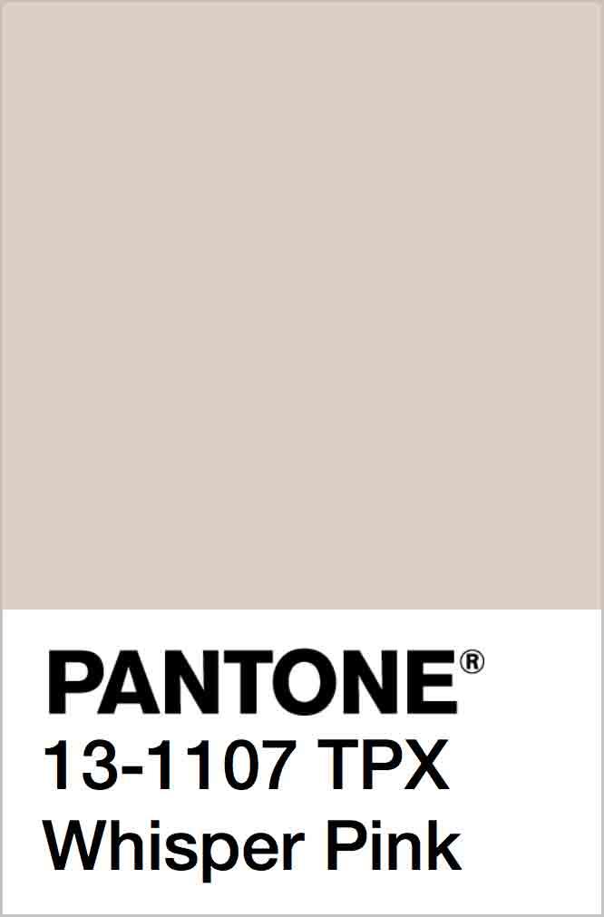 PANTONE 13-1107 TPX Whisper Pink