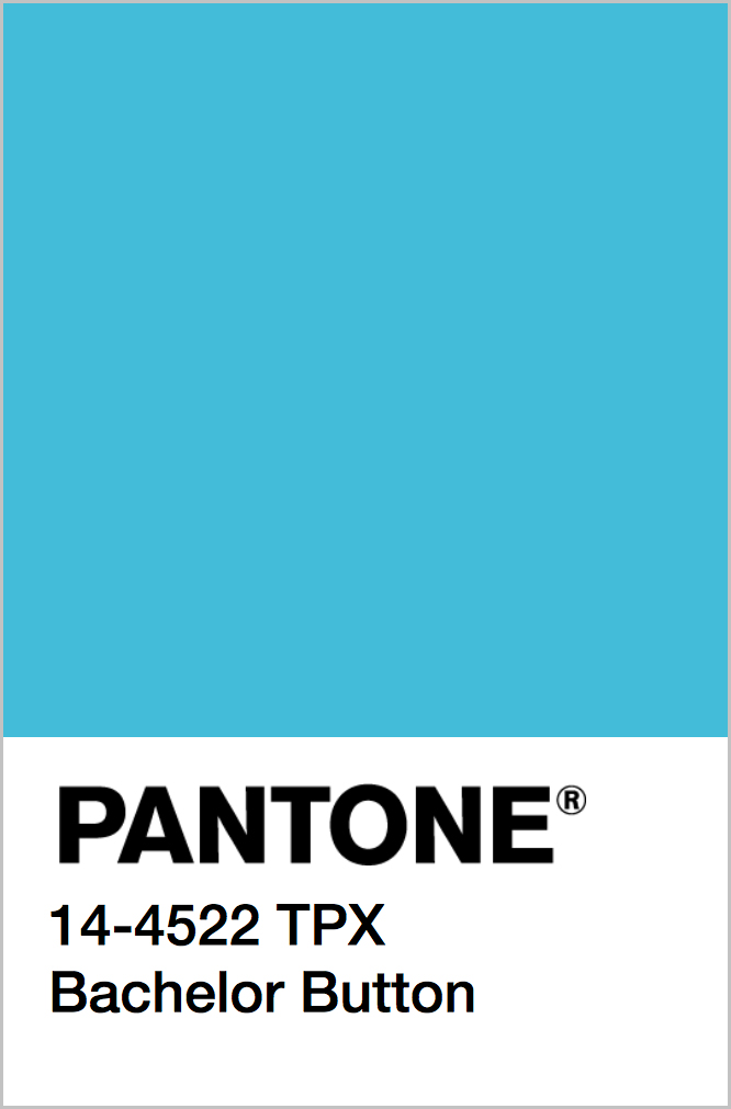 PANTONE 14-4522 TPX Bachelor Button