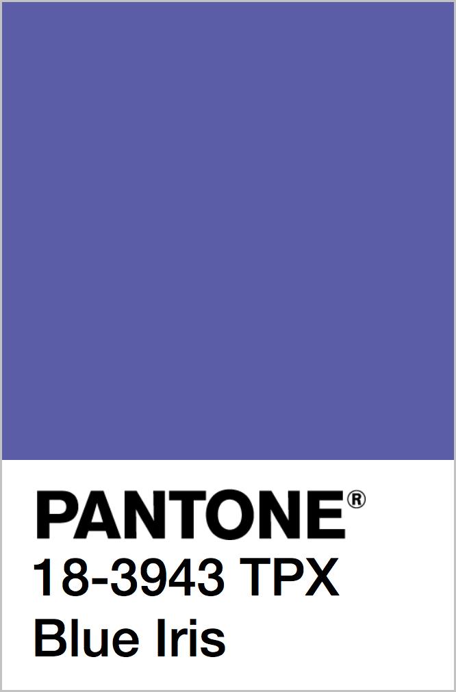 PANTONE 18-3943 TPX Blue Iris