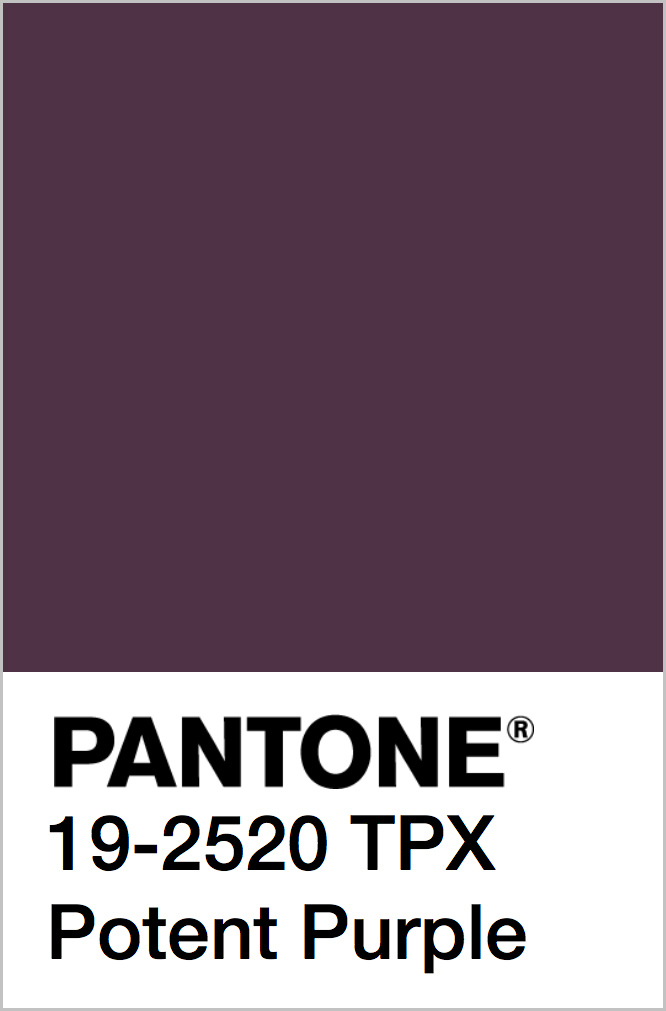 PANTONE 19-2520 TPX Potent Purple