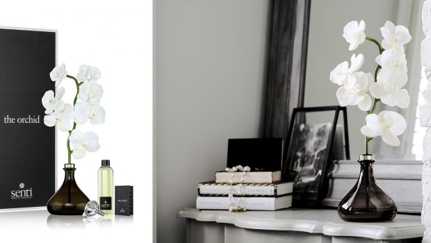 The Orchid Diffuser The elegant Senti Orchid is an innovative new way to scent the home through a beautifully crafted diffuser that marries sculpture and fragrance.