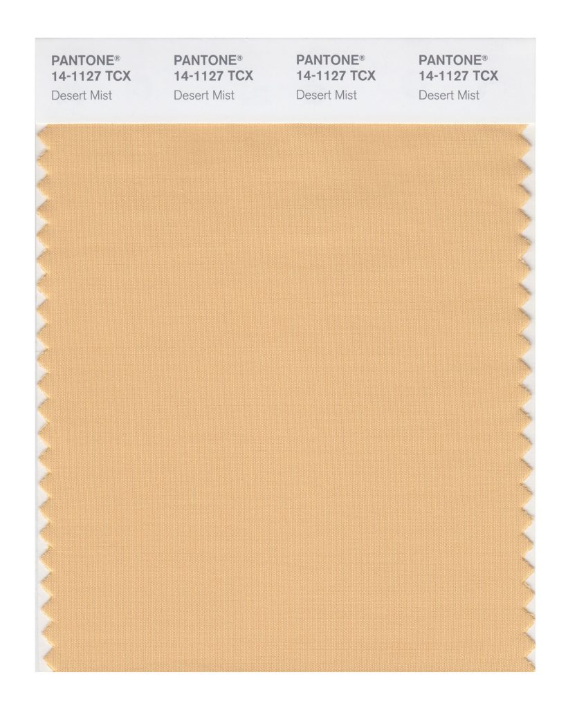 PANTONE 14-1127 TCX Desert Mist. Invoking images of shifting powdery sands.