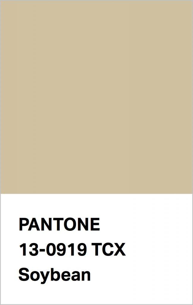 Pantone® Fashion Color Trend Report Autumn/Winter 2021/2022 Colors. PANTONE 13-0919 Soybean.
