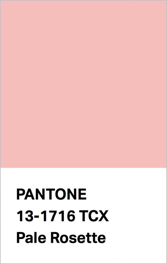 Pantone® Fashion Color Trend Report Autumn/Winter 2021/2022 Colors. PANTONE 13-1716 Pale Rosette.