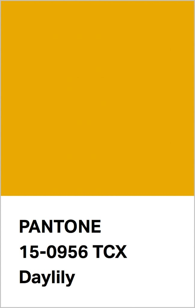 PANTONE 15-0956 Daylily: An uplifting orange infused yellow with perennial appeal.