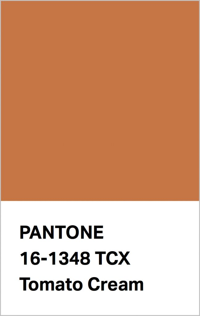 PANTONE 16-1348 Tomato Cream: Tomato Cream is a buttery brown that warms the heart.