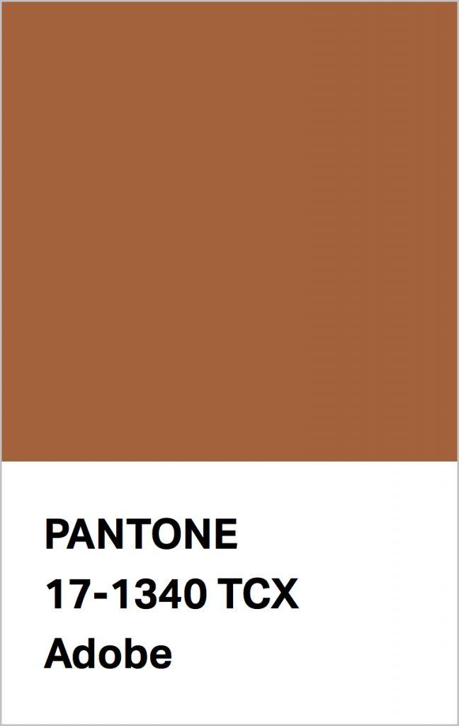 Pantone® Fashion Color Trend Report Autumn/Winter 2021/2022 Colors. PANTONE 17-1340 Adobe.