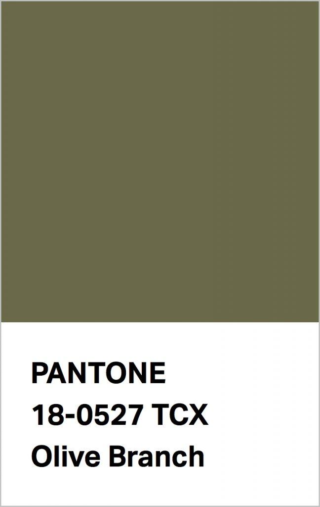 Pantone® Fashion Color Trend Report Autumn/Winter 2021/2022 Colors. PANTONE 18-0527 Olive Branch.