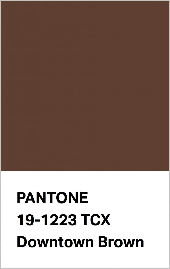 PANTONE 19-1223 Downtown Brown: A metropolitan brown with a bit of swagger.